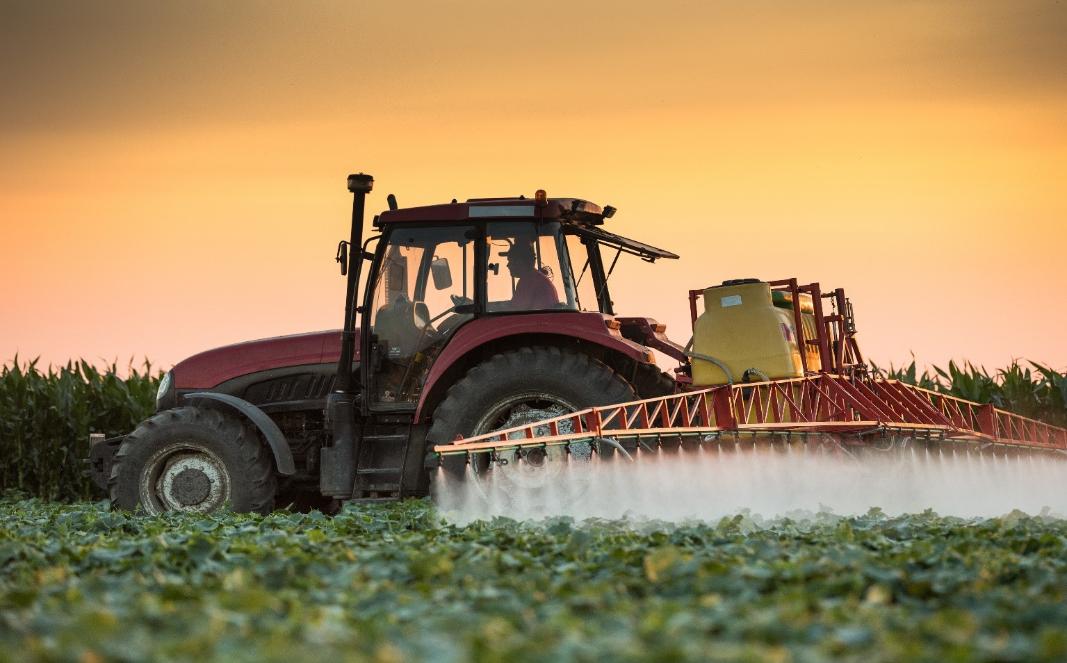 Health Effects of Pesticides